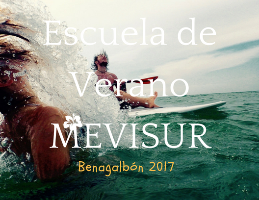 MEVISUR-1